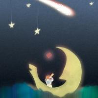 Luna Sail